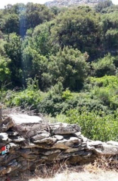 Σεμινάριο για την ανάδειξη της τέχνης της ξερολιθιάς στην Άνδρο